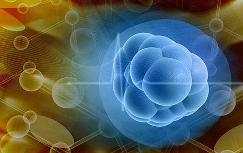 干细胞疗法